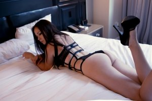 Soelie sex club in Palm River-Clair Mel Florida & live escort
